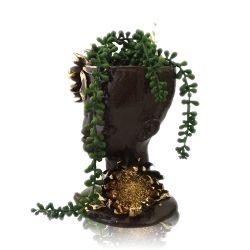 Vase, Dark Protea