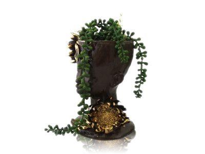 vase-dark-protea