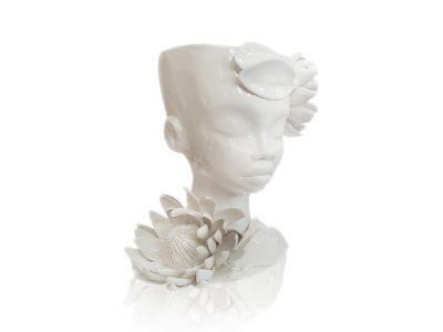 vase-protea